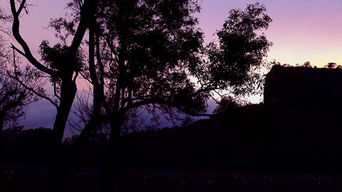 Sunset view Lion Rock fortress with ancient gardens world heritage in Sri Lanka Footage