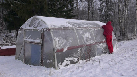 Gardener cleaning removing snow from plastic greenhouse in farm Footage