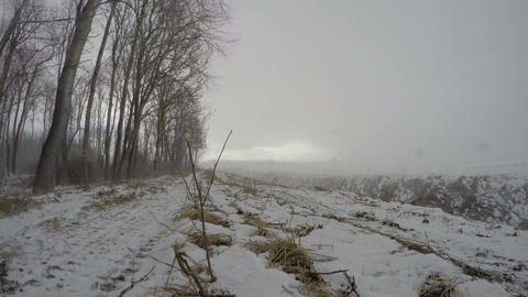 Windy snowstorm in winter near forest, time lapse 4K Footage