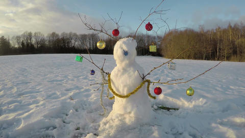 Snowman in winter field by forest, time lapse 4K Footage