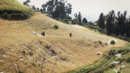 People in ethiopia carrying crops in a hilly terrain Footage
