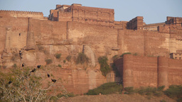 Jodhpur Fort With Birds,Jodhpur,India stock footage