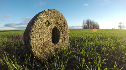 Ancient millstone in crop field, time lapse 4K Footage