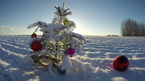 Beautiful Christmas tree with bauble on snowy new year field, time lapse 4K Footage