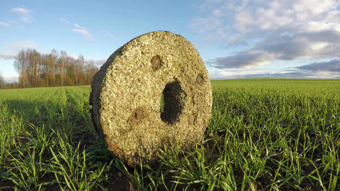 Ancient millstone in wheat field, time lapse 4K Footage