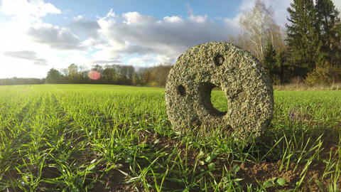Ancient millstone in the fields, time lapse 4K Footage