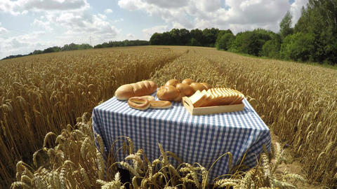Various white breads in wheat field, 4K time lapse Footage