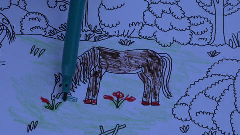 Coloring book for children with a horse, 4K Footage