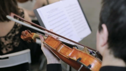Close-up of musician playing violin, classic music Live Action