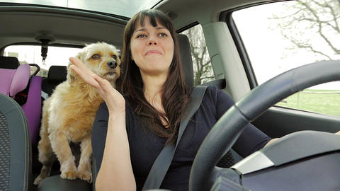 Happy woman kissing dog while driving car slow motion Footage