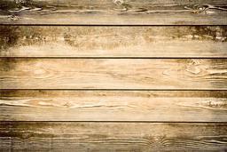 Light Brown wood texture9 Photo