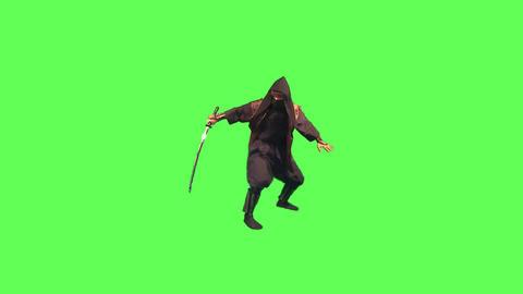 剣術をする忍びの頭領2 ビデオ