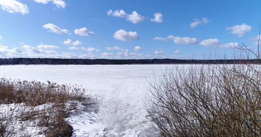 Dry grass near the shore of the winter lake Footage