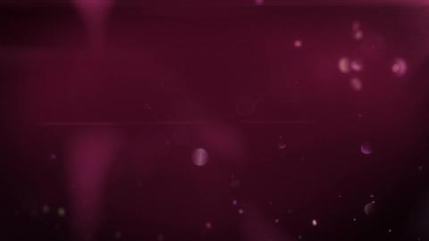 SHA Light Leaks Pink 動画素材, ムービー映像素材