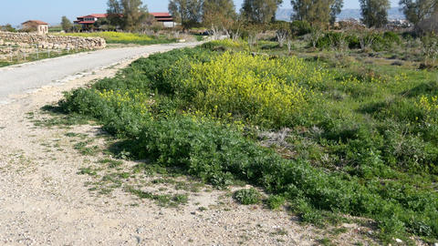 Ancient ruins in Pafos Archaeological Park ,Cyprus Footage