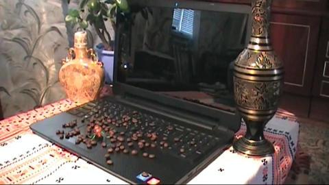 Laptop,herring,onions,potatoes,vodka,drunk, Russian Live Action