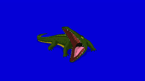 Crocodile Alligator Open his Mouth. Animated Motion Graphic Isolated on Blue Scr Animation