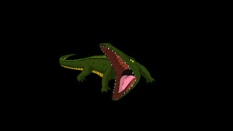 Crocodile Alligator Open his Mouth. Animated Motion Graphic with Alpha Channel Animation