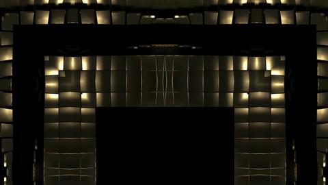 Gold Squat Forms new 29fps VJLoop LIMEART Live Action