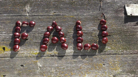 Word FALL made of chestnuts on old wooden background Footage