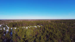 Aerial footage. Winter landscape. Sunny day. Winter forest Footage