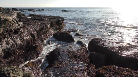 Sea waves splash on shore rocks Footage