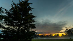 Night to day timelapse. Tree and epic cloud Footage