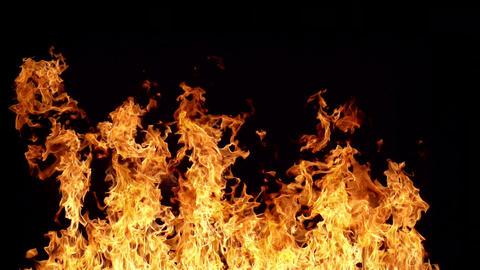 Looping Fire Element ビデオ
