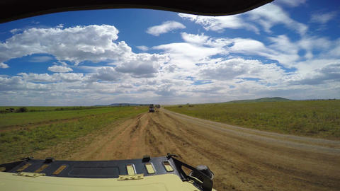 Elephants, wildebeest and Zebra. Safari - journey through the African Savannah.  Footage