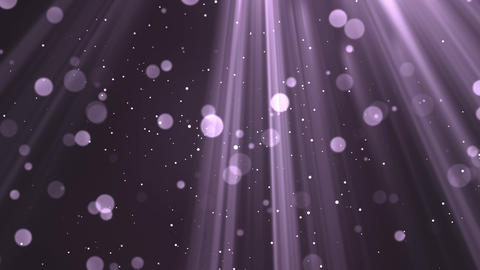 Bokeh Light Rays Purple Animation