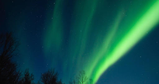 Northern Lights, polar light or Aurora Borealis in the night sky over Senja isla Live Action