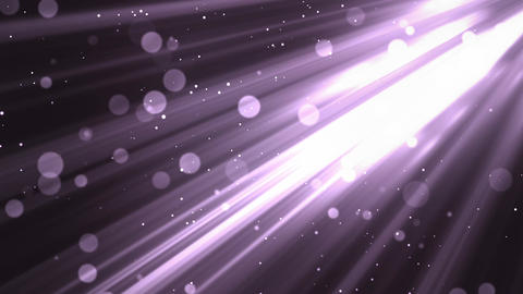 Bokeh Elegant Rays Purple Animation