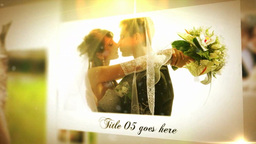 Wedding 077 stock footage