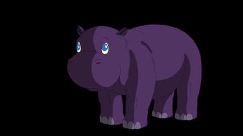 Little Violet Hippo Wakes Up and Open His Mouth Animation