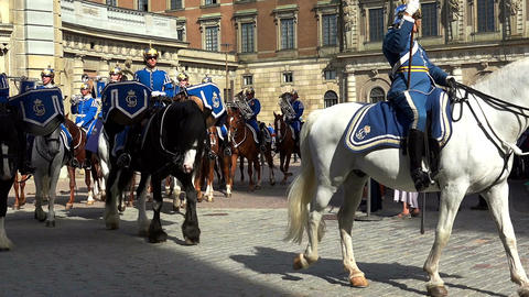 Honor guard at the Royal Palace in Stockholm. Sweden Footage