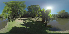 360 VR Green Mauritius park with pond on sunny day ビデオ