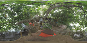 360 VR Place for rest on the river bank with trees, Mauritius Archivo