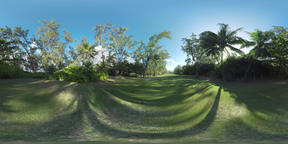 360 VR Green park with big lawn on sunny day, Mauritius Archivo