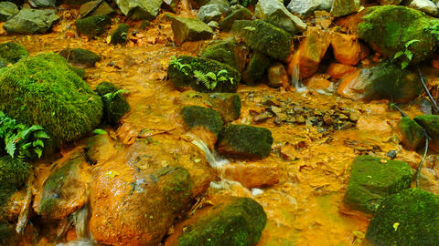 Stream water full of red ferric sediments. Cascades in stream, mossy boulders an Live Action