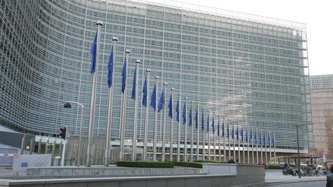 Europeaan flags Footage