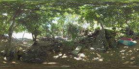 360 VR Quiet place for rest in the wood on riverbank, Mauritius VR 360° Video