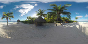 360 VR Tropical scene with ocean, palms and white sand beach. Mauritius Footage