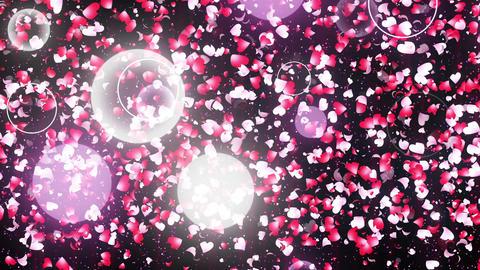transition of cherry blossom Animation