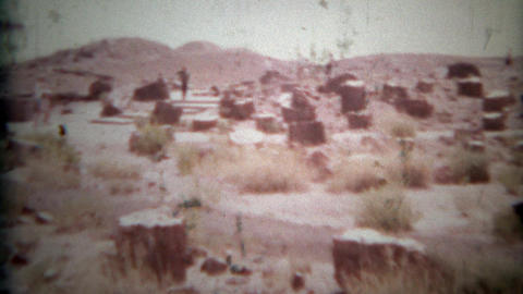 1957: Petrified wood forest national park travel log Footage