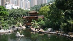 Hong Kong Nan Lian Garden Pond Pavillion stock footage