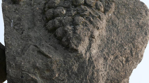 Ancient Art Tilt Footage