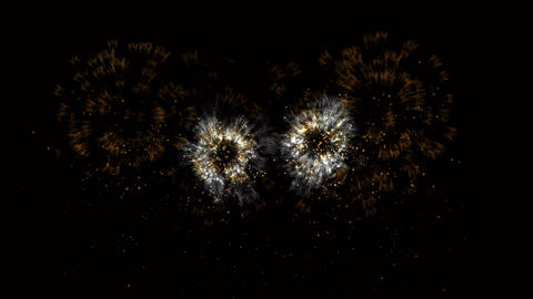 Gorgeous bright fireworks in the night sky, animation with alpha channel Animation