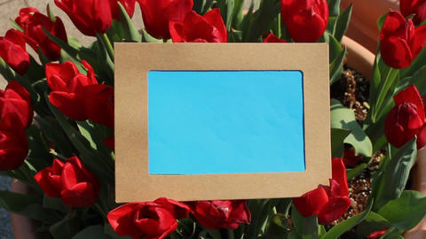 Photo Frame Collection 2