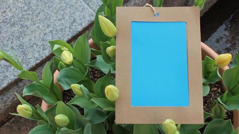 Flower photo frame13 ビデオ