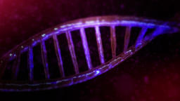 DNA Red color Animation